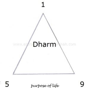 Bhagawad Gita in Astrology !! -Dr.Sudhir Shah